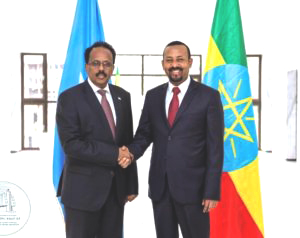 Ethiopian, Somali leaders hold bilateral discussion (March 05, 2019